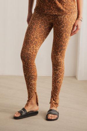 Legging Léopard Ragdoll